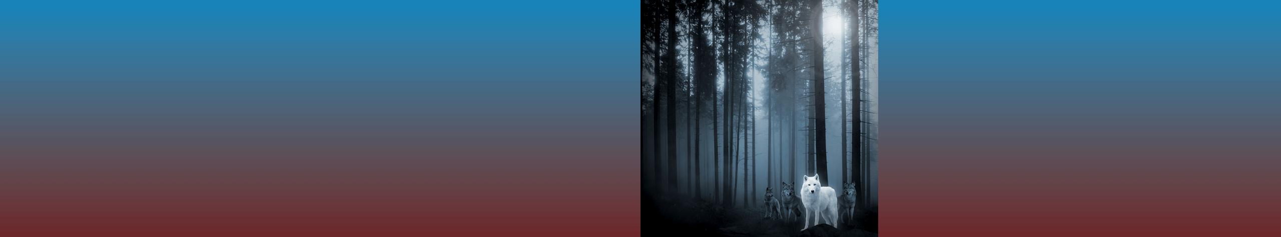 slider_2560pixel_wolf